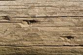 Защита древесины от гниения.  Способы обработки древесины противогнилостными средствами и составами.