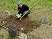 С каких работ в огороде и саду начинать дачный сезон?