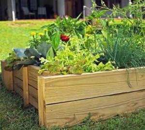 Высокие грядки для вашего огорода