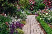 Сад несбывшейся мечты или настоящие саженцы