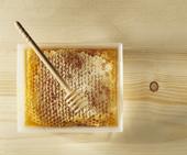 Народная экспертиза. Мёд.