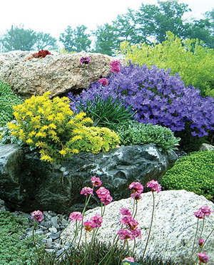 Современные каменистые сады