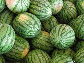 Как выбрать спелый арбуз, его полезные свойства и рецепты