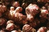 Топинамбур - идеальное растение