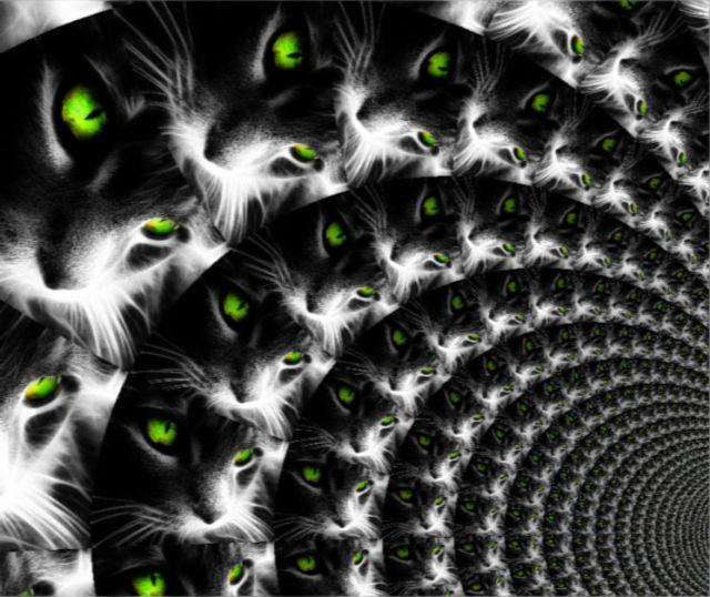 Потти -2 ... У кошки - семь жизней... (повесть) О. Хмелевская