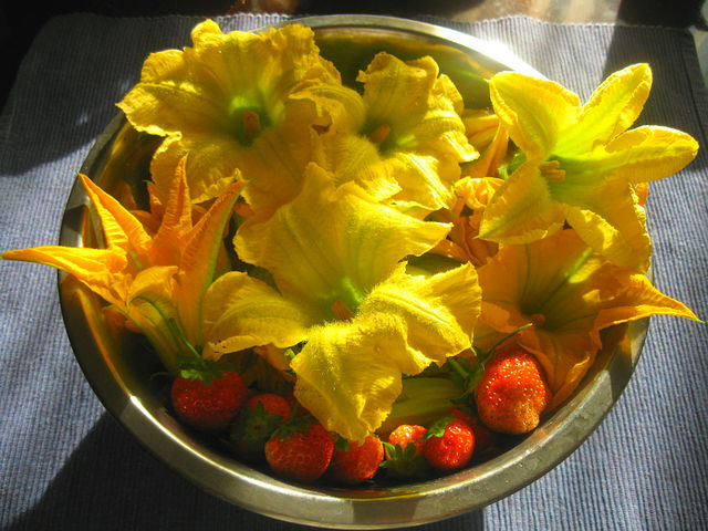 Жареные цветки кабачков или тыквы в кляре
