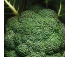 Капуста Брокколи - полезные свойства и рецепты