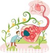 Как продукты питания препятствуют закупориванию артерий
